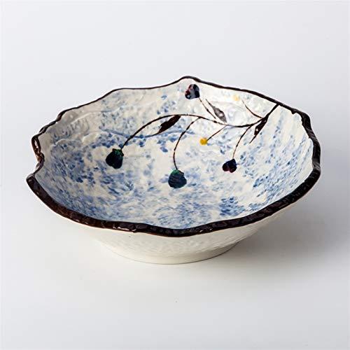 H/A Vajilla de cerámica japonesa para hotel, restaurante creativo, ensalada de frutas y verduras, 25,4 cm, cuenco de sopa TOM-EU (color: blanco, tamaño: 10 pulgadas)