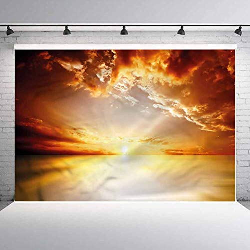 10x10FT Vinyl Photography Backdrop,Sun,Tranquil Sunset Horizon Photoshoot Props Photo Background Studio Prop