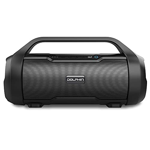 Dolphin LX-20 Dual Portable Bluetooth Waterproof Tube Speaker with HD Sound and Bass, High Power 30W, Includes FM Radio, USB/SD MP3, AUX Input