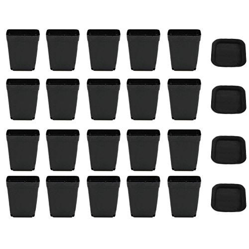 Gosear 20 Paquete Cuadrado de plástico suculentas Planta Jardinera Maceta con Plato platillo para casa Oficina jardín decoración Negro