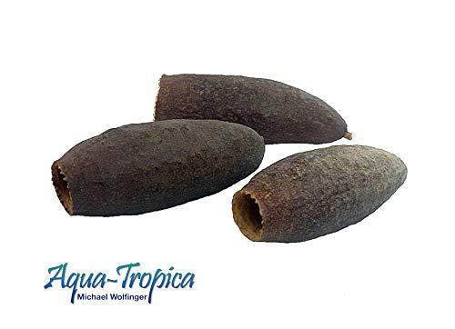 Aqua-Tropica ATN-116 Shrimp-Pod - Natürlicher Unterschlupf für Garnelen, Zwergkrebse, Krebse, Welse