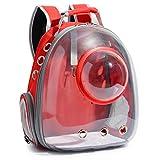 Senoow - Bolsa de Hombro Transparente para Mascotas, 5 Unidades, Rojo. (Multicolor) - XIAOKE6931