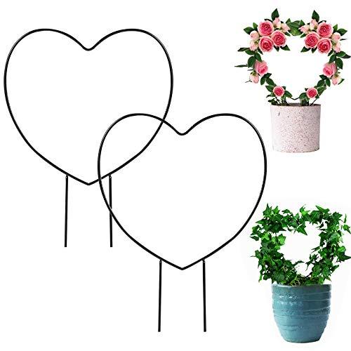 Traliccio da giardino in ferro 2 pezzi Traliccio per piante rampicanti Piante in vaso decorative Supporto Piante in filo Supporto da arrampicata Rack per piante rampicanti da interno e da esterno