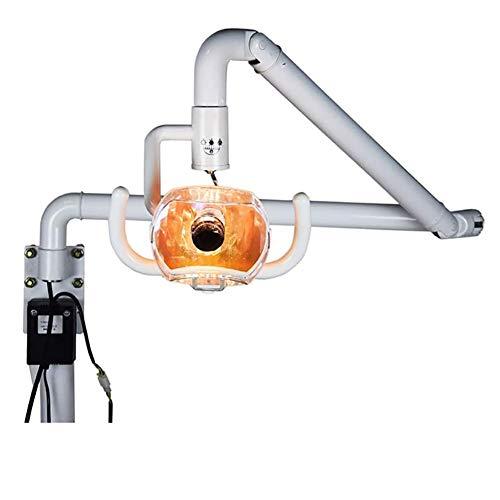 ZZYYZZ Lámpara Dental Oral LED sin Sombras montada en la Pared de 50 W, lámpara de Examen médico, Luces dentales médicas quirúrgicas
