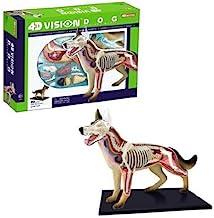 Tedco 4D Vision Dog Anatomy Model