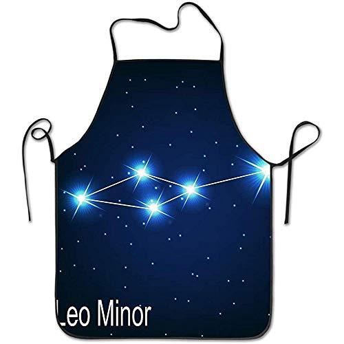 Myrdora Justierbare Hauptküche-Schürze der Sternbild-Löwe-Kleiner Stern im nächtlichen Himmel für das Kochen des Backen-Restaurants