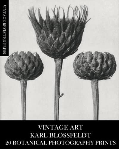 Arte vintage: Karl Blossfeldt 20 impresiones de fotografía botánica: macro fotografía efemera para enmarcar, decoración del hogar, collage, decoupage y revistas basura