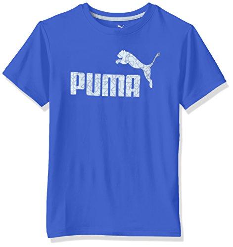 PUMA Big Boys' No.1 Logo Tee, Royal, 14-16 (Large)