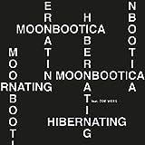 Hibernating (feat. Zoe Wees) [Clean]