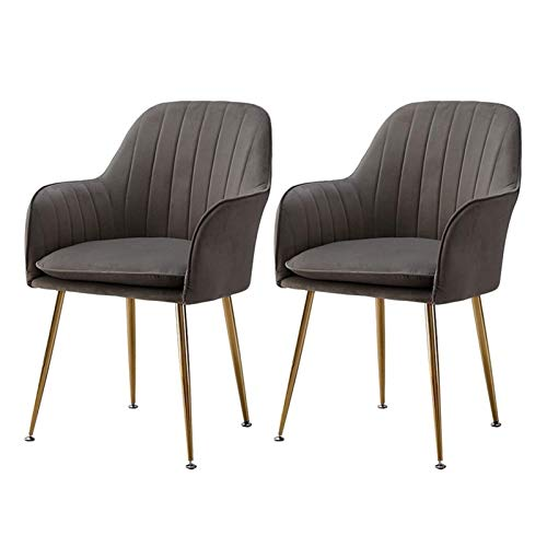 Modern Dining Chair Velvet Fabric Chairs Sturdy Metal Legs Side Chair with Arms Rest for Dining and Living Room Chairs (Color : Gray, Size : 2pcs)