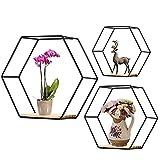 Honeyhouse Juego de 3 estantes hexagonales de metal para pared, estantes de almacenamiento de alambre de metal, estantes para colgar en la sala de estar, oficina, dormitorio, baño (negro)