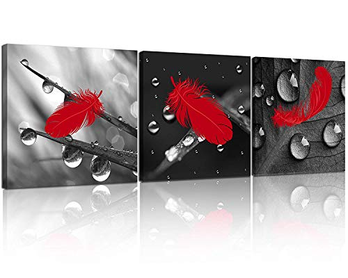 NAN Wind 3 Pcs Red Wall Art Canvas Prints Red Feather on The Drops of Water Black and White Wall Art Abstract Wall Decor Paintings on Canvas Stretched and Framed Ready to Hang for Home Decor