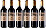 Collines Antiques - Vino merlot, IGP Pays d'Oc, añada 2018, (6 botellas de 750 ml)