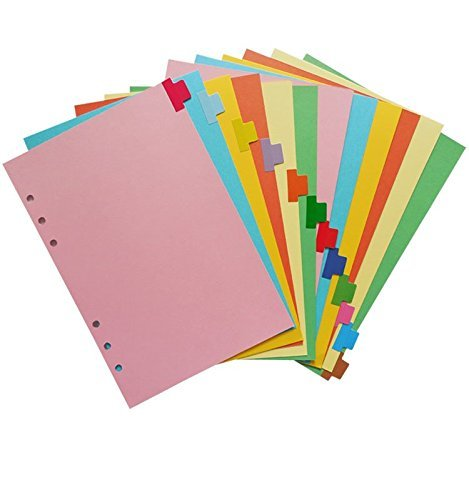 Chris.W A5 Size 6-Ring Paper Index Divider Category Page Tab Indexing Cards, Great Personal Planner/Notebook/Loose Leaf Binders/Reposrts Accessories, 1 Set of 12 Tabs