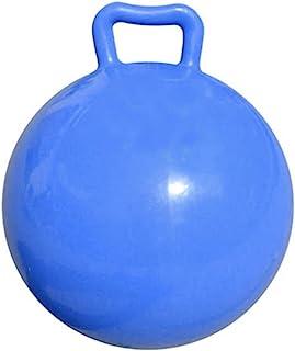 POPETPOP 2Pcs Ile Kabarık Topu Kolları Çocuklar Zıplatma Top Şişme Hazne Top Atlama Çocuklar Top Atlama Hazne Top ( Gökyüz...