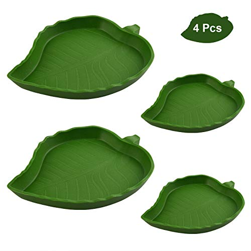 QUACOWW 4 Pieces Leaf Reptile Food Water Bowl Plate Dish for Pet Aquarium Ornament Terrarium Dish Plate Lizards Tortoises or Small Reptiles Snake Crawl Pet Drinking and Eating(2 Sizes)