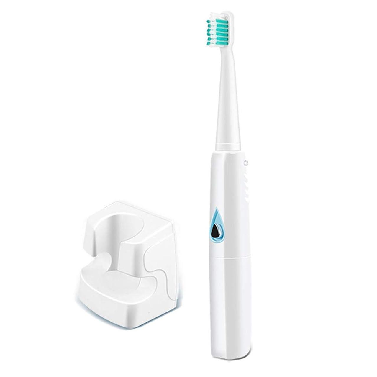 ソニック歯ブラシ、電動歯ブラシ、簡単に掃除するための3つの交換用ヘッド付きUSB充電式ソニック歯ブラシ、31000ストローク/分、防水
