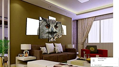 GHYTR Animal De Búho De Vida Silvestre Cuadro sobre Impresión Lienzo 5 Piezas Marco 150X80Cm HD Arte De Pared Modulares Sala De Estar Dormitorios Decoración para El Hogar Póster Regalo