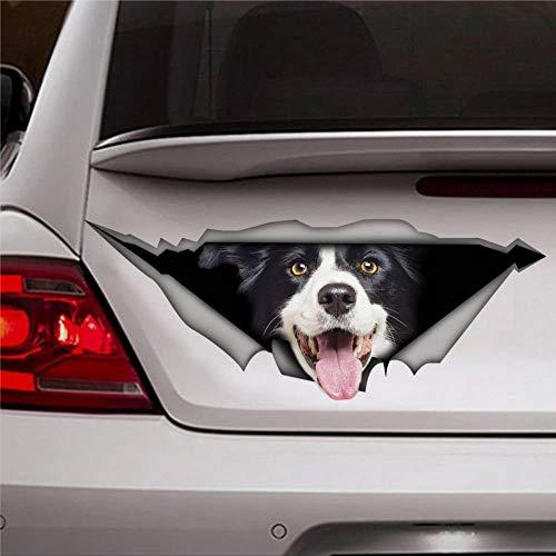 DONL9BAUER Autoaufkleber Border Collie Hund Vinyl Auto Scratch Cover 3D Aufkleber Fenster Aufkleber für Laptop Reise Fall Tumbler Tür Stoßstange Gepäck