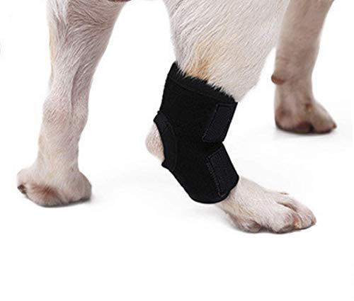 WXFEXIA Paire d'attelle arrière pour chien - Protège les plaies et les entorses en raison de l'arthrite pour prévenir les blessures et les entorses ou la marche (1 paire) (L)