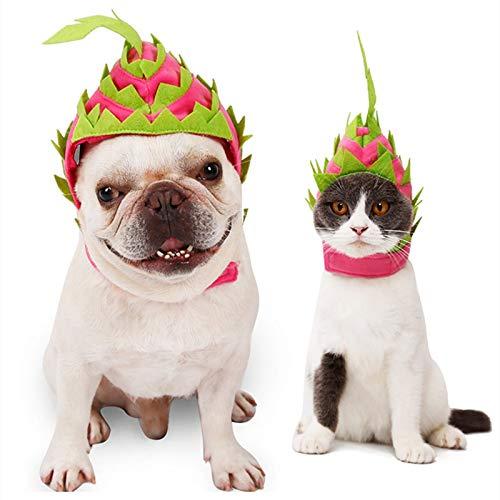 Disfraz De Halloween para Gato, Dos TamaOs De Sombrero De DecoraciN De Halloween De Fruta De DragN para Perros Y Gatos 1 Pieza para Halloween Navidad Festival