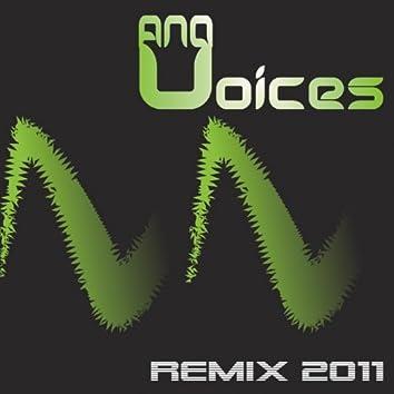 Voices (Remix 2011)