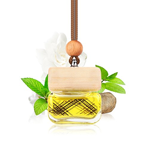 L J Auto Lufterfrischer, Autoduft, original französisches Parfumöl hergestellt bei Mane®, Auto Zubehör, Auto Duft, Leichter Duft fürs Auto, Hängefläschchen im Fahrzeug, Raumduft, 10ml (G-1251)