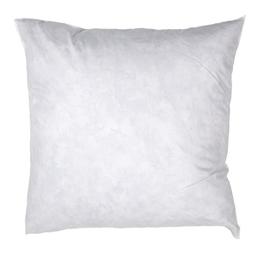 Famous Maker White x 24in Feather/Down Pillow Form
