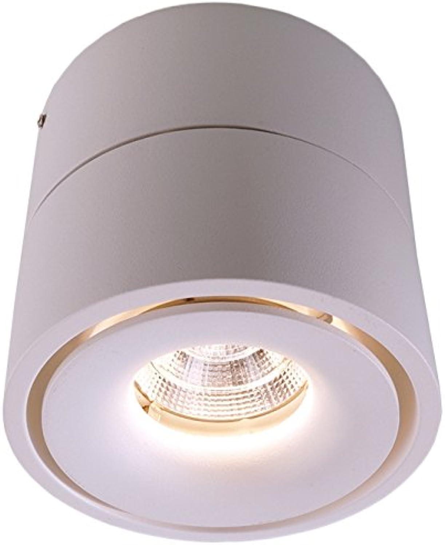 Décoratif lumière plafond Montage en saillie, uni, AC 220–240V 50–60Hz, 9,00W 342011