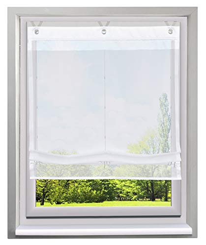 Bailey Jo ösenrollo Schön spleiss Estor con ganchos de v transparente Voile Cortina, Blanco, BxH 100x155cm