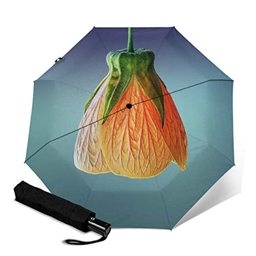 N\A A Prueba de Viento Ligero Paraguas Palo Floral de la Flor Completa de impresión automática Parapluie Rainy portátil Plegable Paraguas a Prueba de Viento Hombres Mujeres Paraguas (Color : YSC1004)