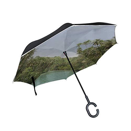 Paraguas invertido de Doble Capa Tributarios compactos invertidos del río Amazonas Paraguas para niños Paraguas Reversible Reversible Hombres Protección a Prueba de Viento para la Lluvia con m