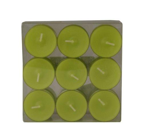 Wenzel-Kerzen 31-1522-18-91 Teelichte, Farn in Kunststoffhülle, ca. 4 h Brenndauer, Pack a 18 Stück