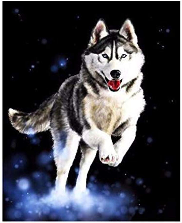 Superlucky Wolf Jump DIY Malen Nach Zahlen Tierölgemälde Tierölgemälde Tierölgemälde Auf Leinwand Cuadros Decoracion Acryl Wandkunstausgangsdekor Eingerahmt 40x50 cm B07L85KDYQ   Praktisch Und Wirtschaftlich  1940d6