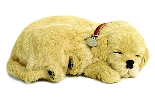 Perfect Petzzz - 4908 - Plüsch - Hund Golden Retriever