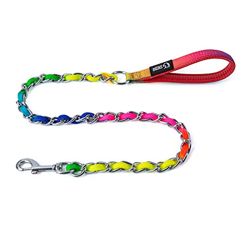TSPRO Chew Proof Rainbow Dog Leash Stainless Steel Dog Leash Metal Chain Training Dog Leash with Soft Handle for Medium Large Dog