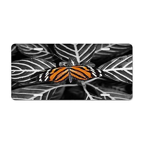 Dant454ty Bladeren Zwart Gestreept Wit Vlieg Dier Goud X License Plate Frame,Decoratieve Front Licnese Plate,Front Vanity Plate,Grappige Vanity Tag,Geschenken voor Vrouwen,voor Mannen