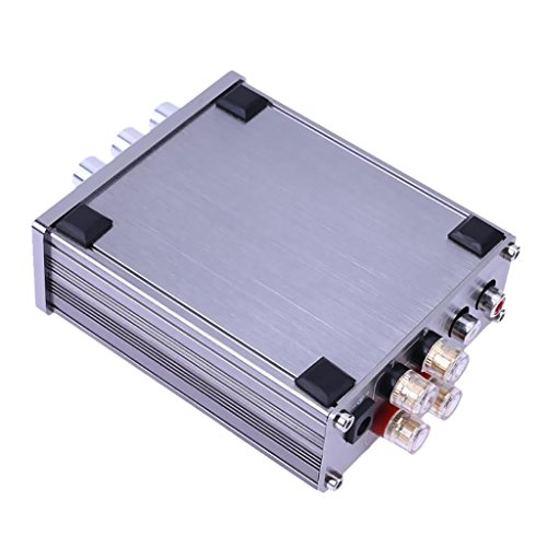 PETSOLA Amplificador de Potencia Digital de Salida Estéreo de 2.0 Canales de Audio HiFi 50WX2 DIY
