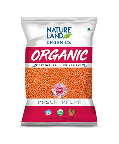 Natureland Organics Malka Masoor Dal / Red Masoor Dal 500 Gm (Pack of 3) - Organic Pulses - Organic Food