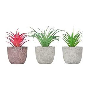 Yidi Artificial Pineapple Grass Air Plants Fake Flowers Faux Succulents Flocking Tillandsia Bromeliads Home Garden Decor, 3 Pack
