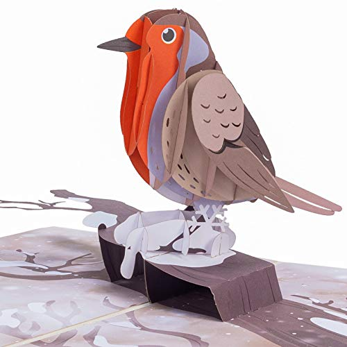 Paper Love Robin Pop Up Card, Handmade 3D Popup Bird Greeting Cards, For Winter, Christmas, New...