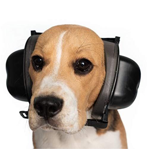 Safe Dogs Ears Gehörschutz Für Hunde. Geräuschphobien bei Hunden (S)