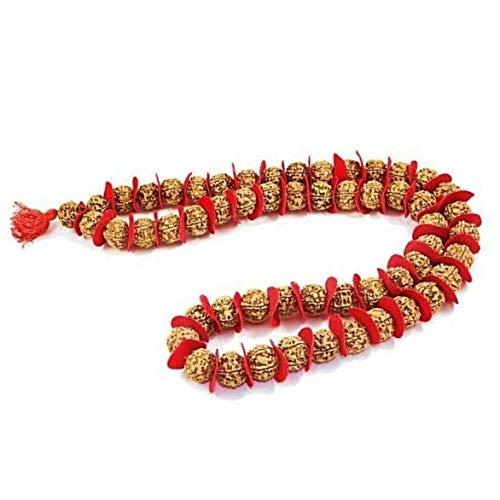 Rudraksha Mala Rudraksha 54 Beards Kantha in 15 mm - 18mm Big Size Beads/for Wearing or Poojan Purpose/Guaranteed Real 5 Mukhi Rudraksha Beads/Panch mukhi Rudraksha Kantha