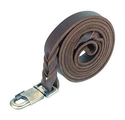 Genuine Leather Braided Dog Training Leash Heavy Leather Duty Lead for Larger Dog (6 Ft-1 in)