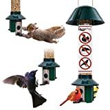 Roamwild Bird Feeder