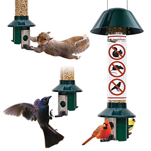 Roamwild PestOff Red Squirrel Proof Cardinal Bird Feeder Mixed Seed Sunflower Heart Version - RED -...