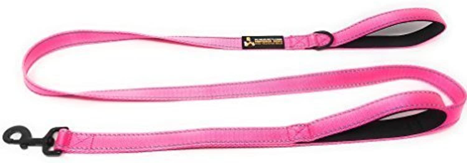 Heavy Duty Double Handle Traffic Dog Leash Reflective Nylon 6 Foot Buy One and We Donate One to a Dog Rescue (Pink)