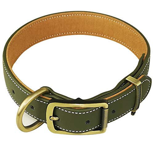 chede Basic Classic Padded Leather Dog Collars,Hair Clip-Proof Dog Collar,Alloy Hardware D-Ring for Small Medium Large and Extra Large Dogs (M, Green)