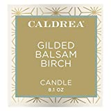 Caldrea Scented Candle, Made with Essential Oils and Other Thoughtfully Chosen Ingredients, 45 Hour Burn Time, Gilded Balsam Birch Scent, 8.1 oz