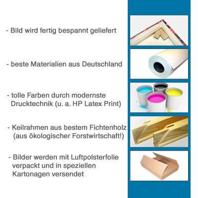 Felicidad y como lienzo, premontada imagen sobre madera-bastidor 5 imágenes Art-Nr. 551900006 de fútbol HERTHA Berlín de la BUNDESLIGA del diseño como cuadro Montado sobre marco, pruebas de calidad más: Amazon.es: Hogar